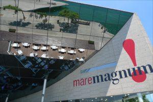 """стеклянная крыша торгового центра """"MareMagnum"""""""