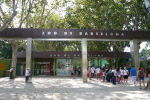вхож в Барселонский зоопарк