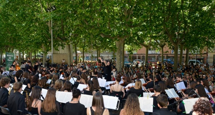 концерт классической музыки в парке