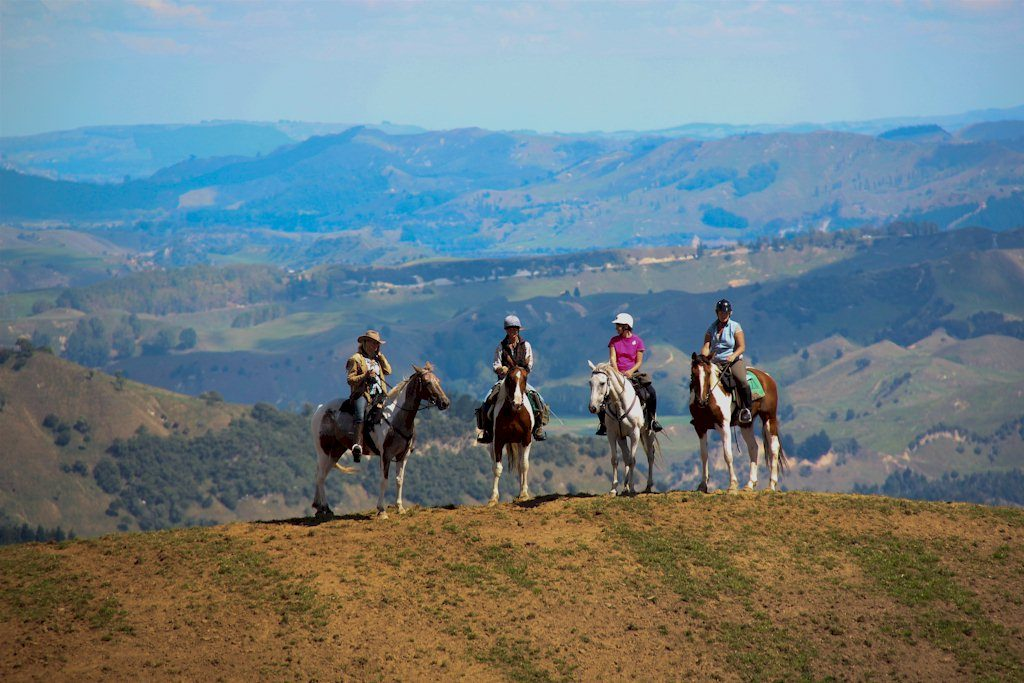 taihape-scenery-on-a-lodge-to-lodge-horse-trek