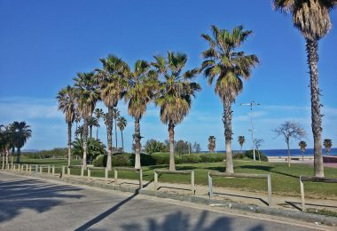 seafront parcs