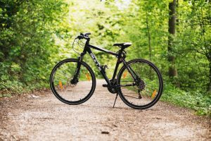 велосипед на тропинке в лесу