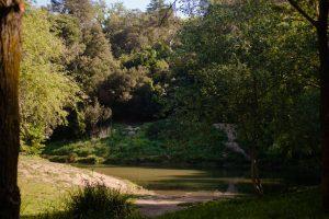 болото Кан Борель в Барселоне, Can Borell