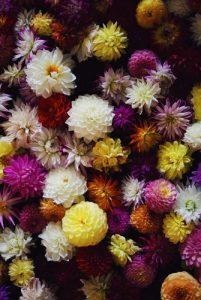 Искусственные цветы в Барселоне