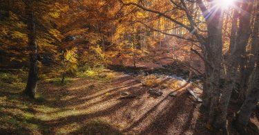 Лучшие осенние пейзажи в Каталонии