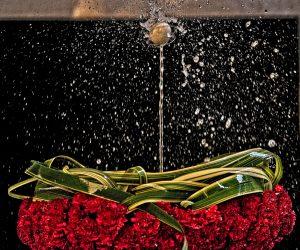 Праздник Корпус Кристи, праздник тела Христова, религиозный праздник