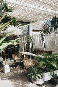 терраса с растениями и мебелью
