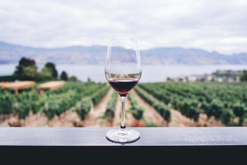 бокал красного вина на фоне полей