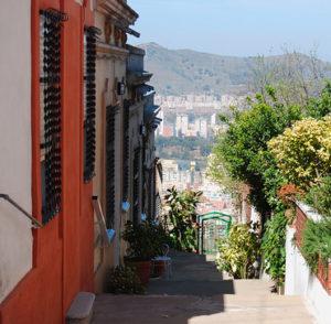 узкая улица с домами и деревьями